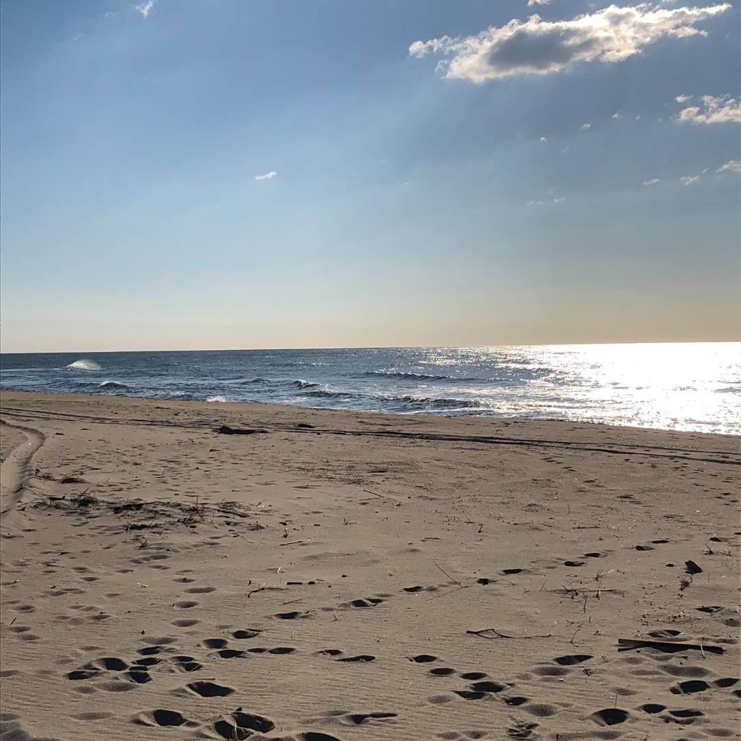 Single Family Home for Sale at Napeague Beach House - South Of The Highway 1900 Montauk Highway, Napeague, NY 11930