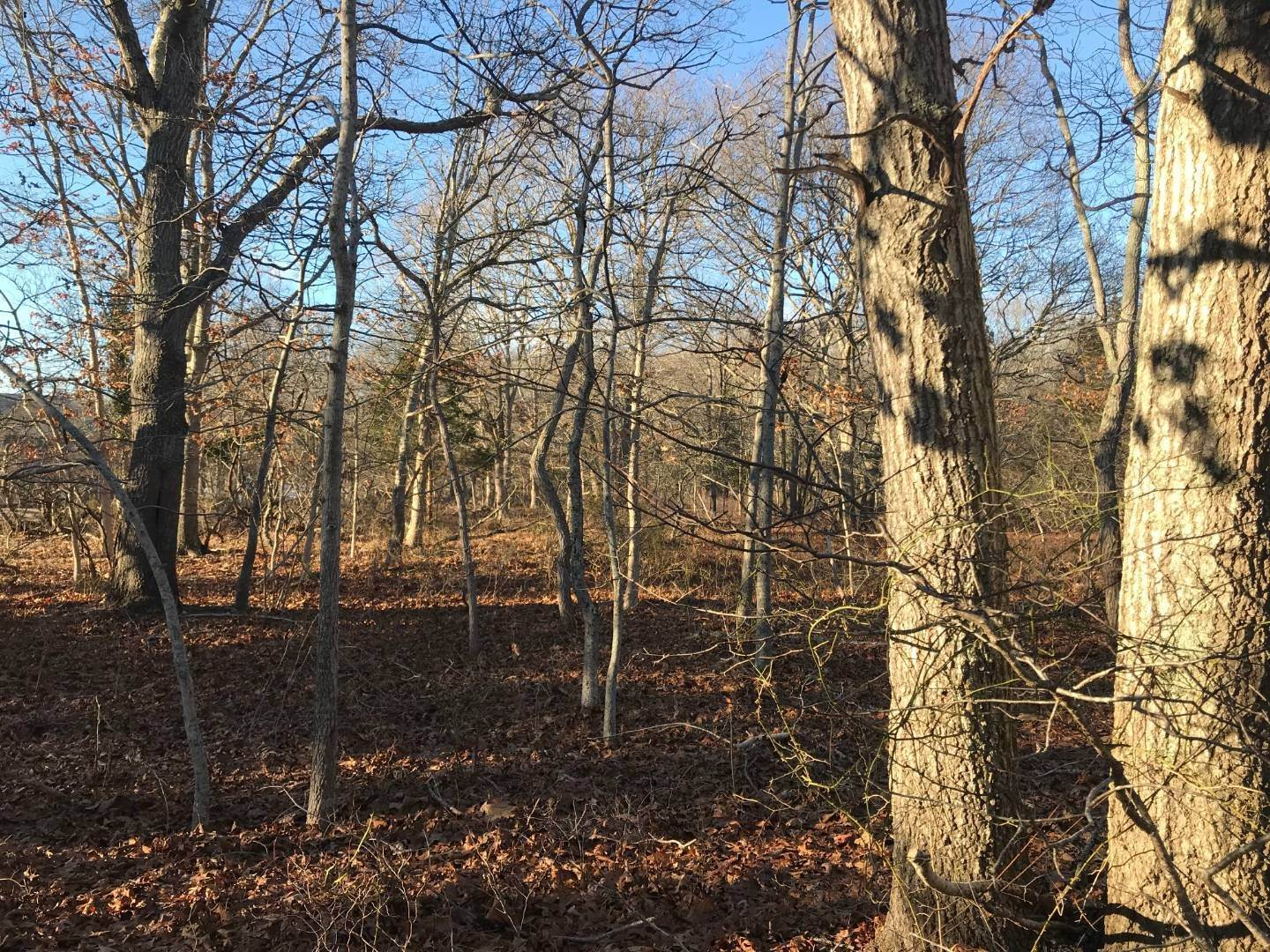 Land for Sale at East Hampton, NY 11937